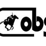 Ocala Breeders Sales Logo
