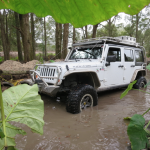Jeep in the mud